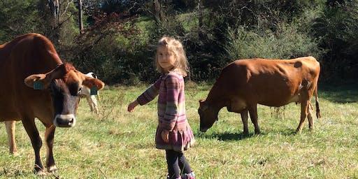Meet the cows farm tour!