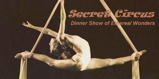 Secret Circus Aerialist Dinner Show