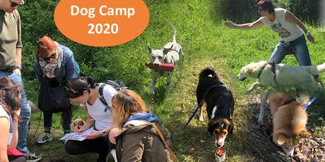 Dogcamp in Tirol 18.7. - 25.7.20 Tickets