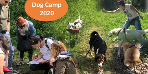 Dogcamp in Tirol 18.7. - 25.7.20