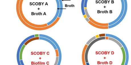 KBI/OSU Genomic Study- A Summary of Kombucha Microbiome Research  tickets