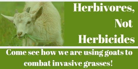 Herbivores, Not Herbicides tickets