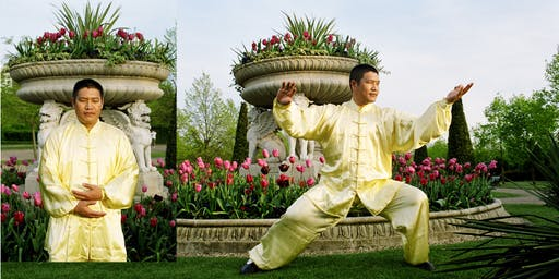10 August: Shifu Liu's Qi Gong and Chen Taijiquan London Workshop