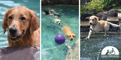 Pool Pawty 2019! - Benefiting Canine Companions for Independence tickets