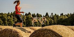 Camp Canis und der Steinkopf | 54426 Malborn - So,...