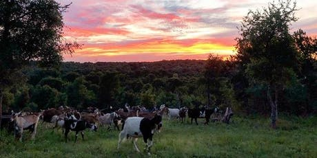 Date Night: A Walk with the Goats tickets