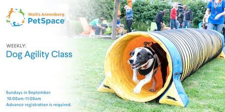 Dog Agility Class tickets