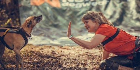 Camp Canis auf der Traumschleife | 55774 Baumholder, So, 18.10.2020 Tickets