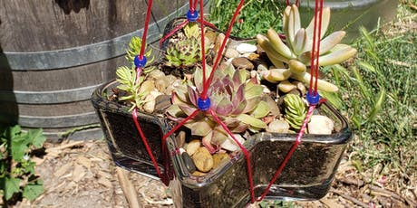 Succulent Craft Night - The Shooting Star tickets