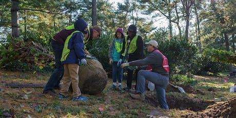 Volunteer: Community Tree Planting - Tregaron Conservancy tickets