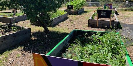 Bayview Blooms Garden Crawl  tickets