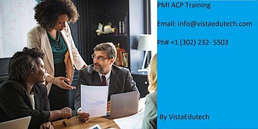 PMI-ACP Certification Training in Springfield, MA
