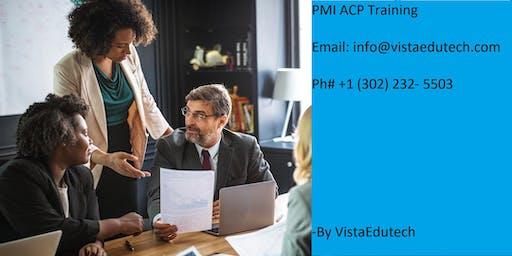 PMI-ACP Certification Training in Terre Haute, IN