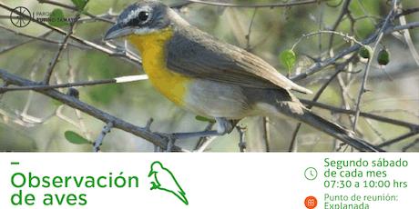 Recorridos de Observación de Aves Parque Rufino Tamayo entradas