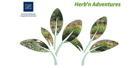Herb'n Adventures- Drying and using home grown herbs tickets