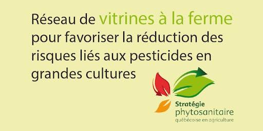 Vitrine « Diminution à la ferme des herbicides à risque élevé pour la santé et l'environnement dans le maïs»   Mardi 30 juillet 2019