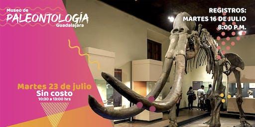 Recorrido al Museo de Paleontología GDL   Martes 23 de julio