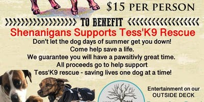 Pig Roast Benifit For Tess'K9