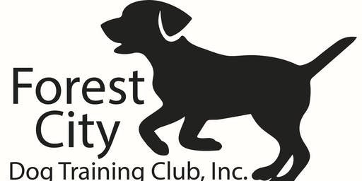 Therapy Dog Class