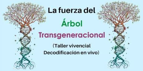 2do Taller: La fuerza del transgeneracional en nuestra  vida entradas