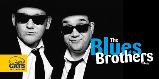 Blues Brothers (Born in Chicago)
