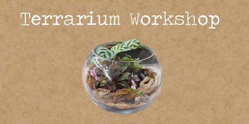 Terrarium Workshop with Rock Leaf Moss @ Teesdale