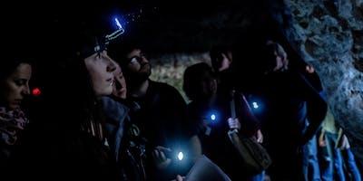 Going Underground: Wild Sound | Redcliffe Caves