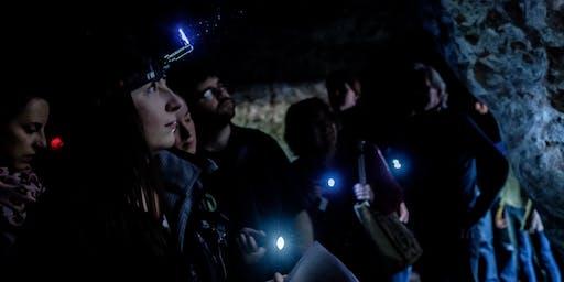 Going Underground: Wild Sound   Redcliffe Caves