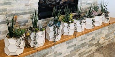 Make it & Take it: White Bowl Succulent Garden
