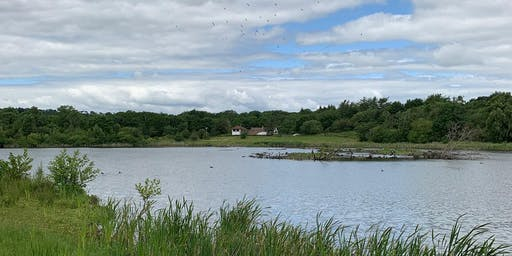 Durham Wildlife Trust & Low Barns Nature Reserve