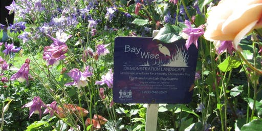 Bay-Wise Landscape Management Advanced Training
