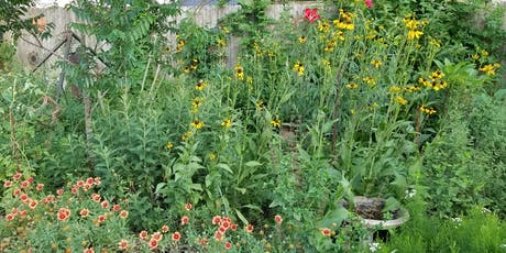 Wildscapes Workshop and Native Plant Sale tickets