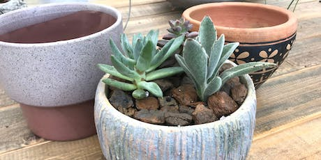 Succulent Diffuser Workshop - Muncie tickets