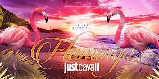 Domenica - Flamingo Just Cavalli Porto Cervo