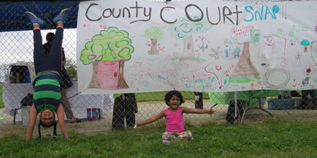Nurturing Neighbourhoods: County Court tickets