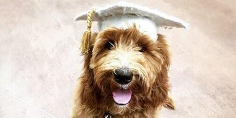 Puppy 101 - Group Dog Training Class  tickets
