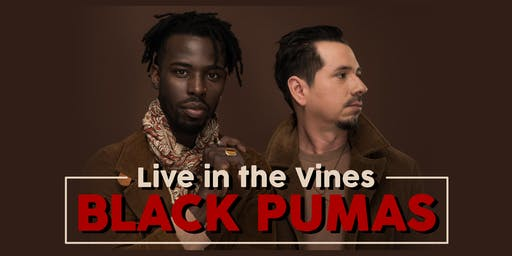 Live in the Vines: Black Pumas