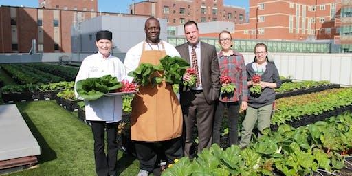 Boston Medical Center Rooftop Farm Tour