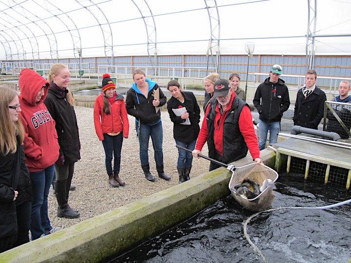 Getting Started In Aquaculture and Aquaponics image