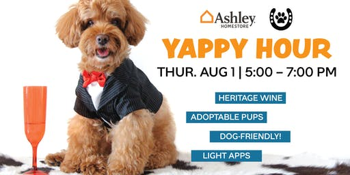 Yappy Hour with ANNA Shelter – Ages 21+ Welcome