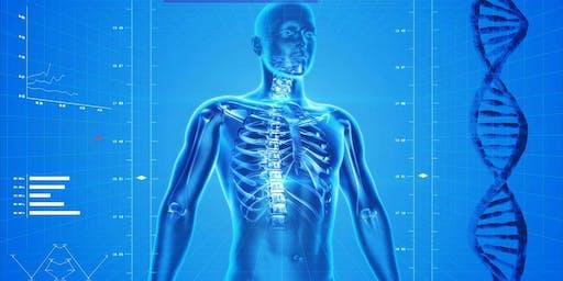 YouSchool- Human Anatomy & Physiology *Friday Class*