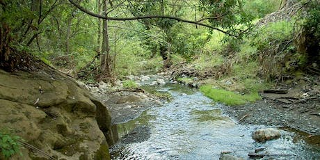 San Francisquito Creek Walk tickets