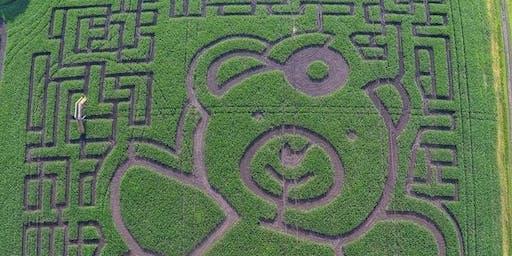 Clan Rugby Corn Maze tour