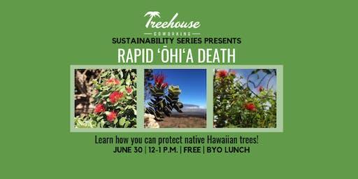 Treehouse Sustainability Series: Rapid 'Ōhi'a Death