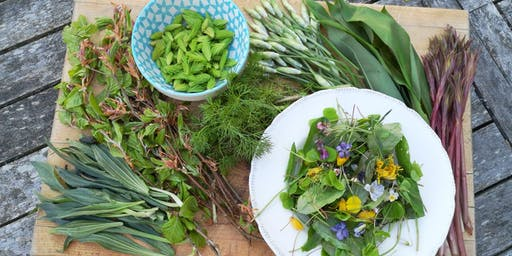 Late Summer Introduction to Foraging Weekend @ Howe of Torbeg