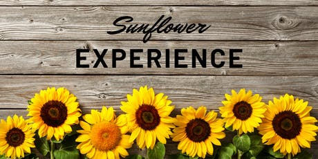 Brantwood Farms Sunflower Experience  tickets