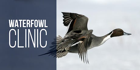 How to be Successful at Waterfowl Hunting - Farmington Bay tickets