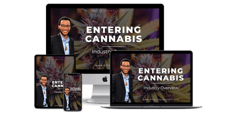 Entering Cannabis: Industry Overview - [Virtual Workshop] - Mexico City  tickets