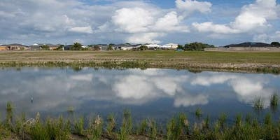 Tanti Creek Catchment Crawl