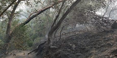Post-wildfire land stewardship workshop tickets